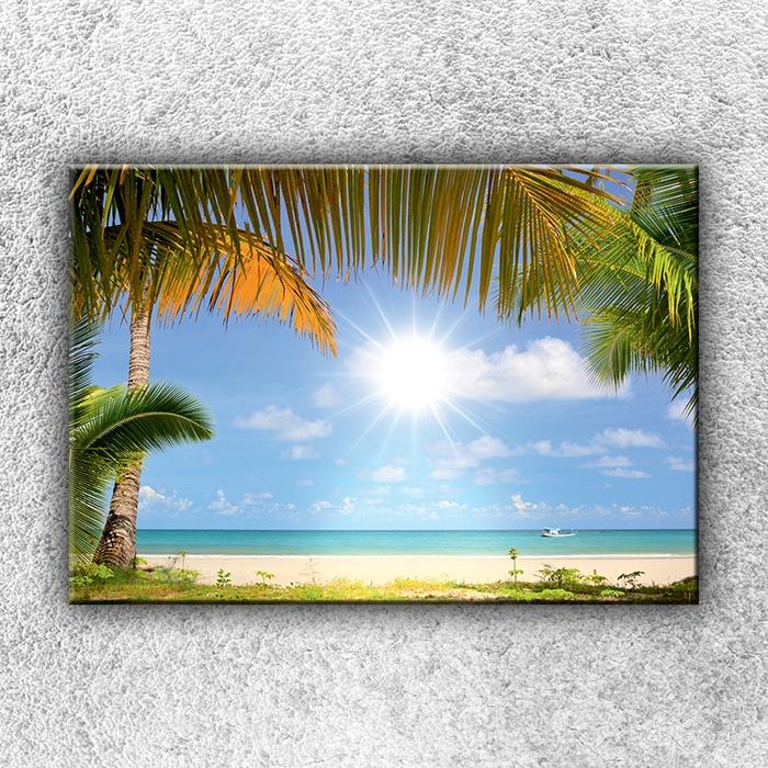 Jednodílný obraz Slunce a palmy 50 x 35 cm