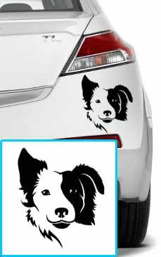 Samolepka na auto Border kolie pes v autě 15x15cm