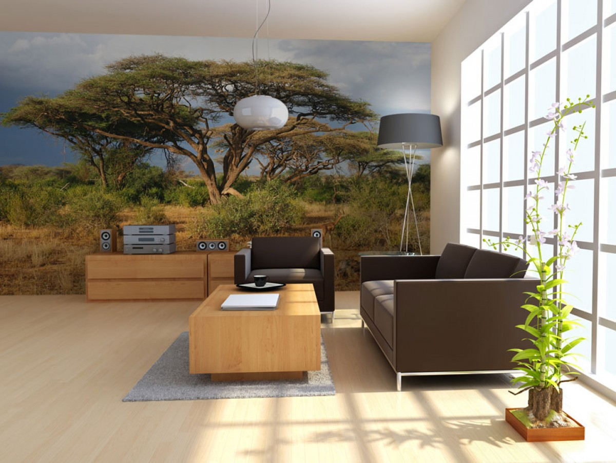 Fototapeta - Strom v Keňi