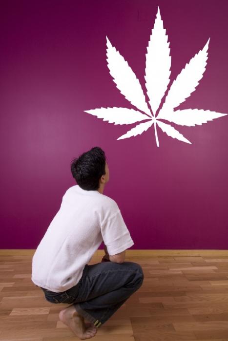 Samolepka na zeď List marihuany